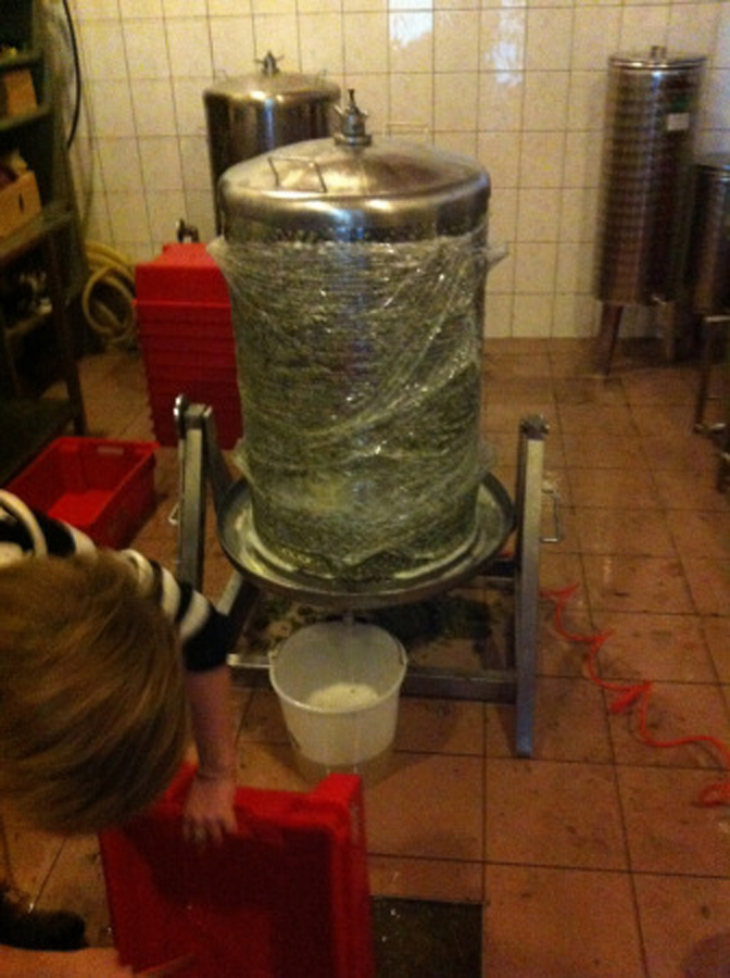 Razsluz vinskega soka