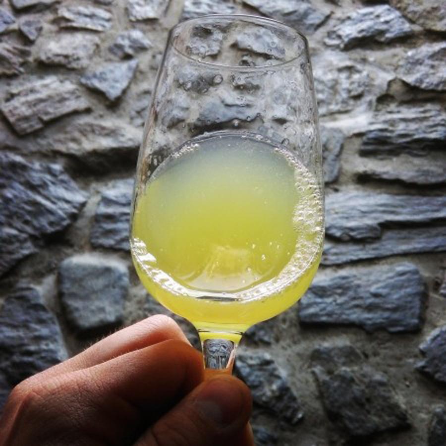 Čudovita barva Sauvignona z značilnimi odtenki zelene