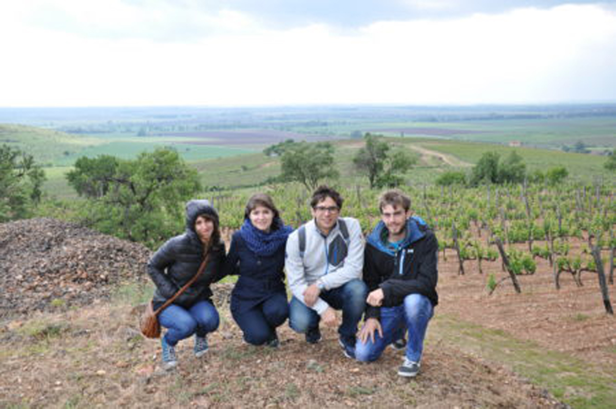 3 Med vinogradi - Rojal Tokai