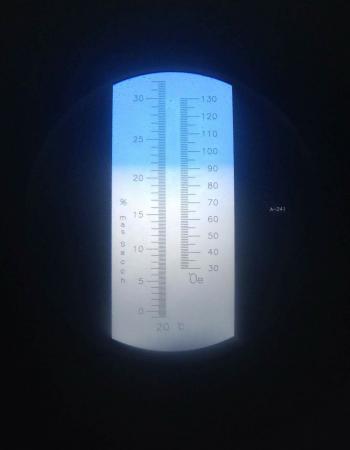 Pogled v refraktometer