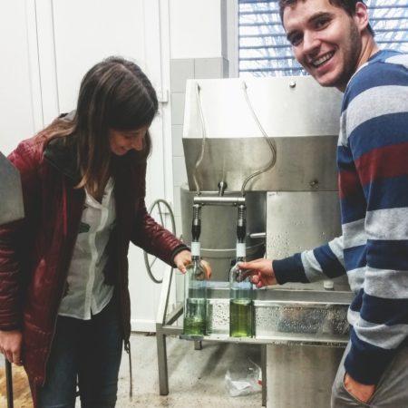 David in Saga med polnjenjem steklenic